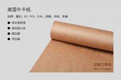 皮具定型纸 皮